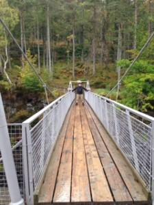 Suspension bridge gorge