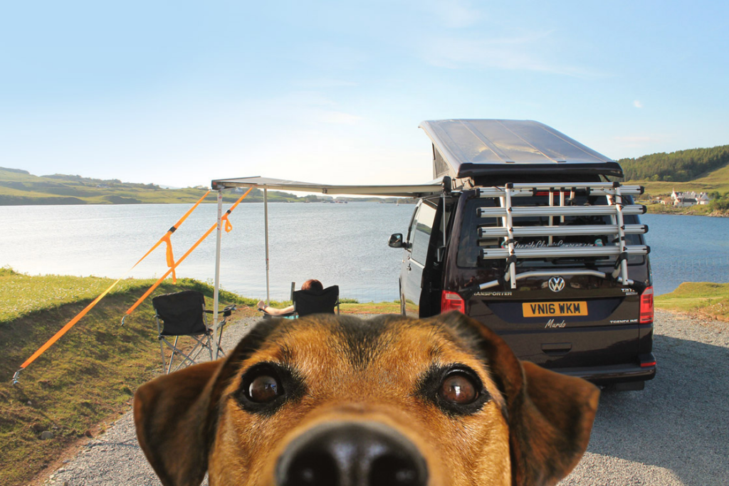 Dog friendly campervan hire Scotland Deeside Classic Campers