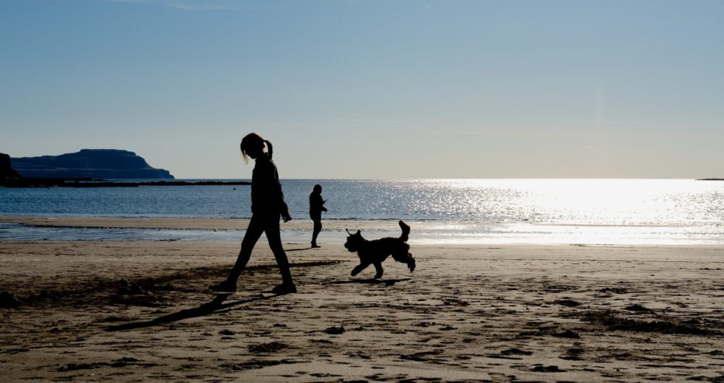 dog friendly beach dog walking on the beach campervan hire Scotland