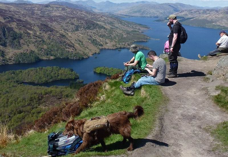 dog walking in the Trossachs with campervan hire Scotland