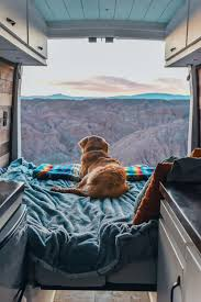 dog friendly campervan hire dog blanket